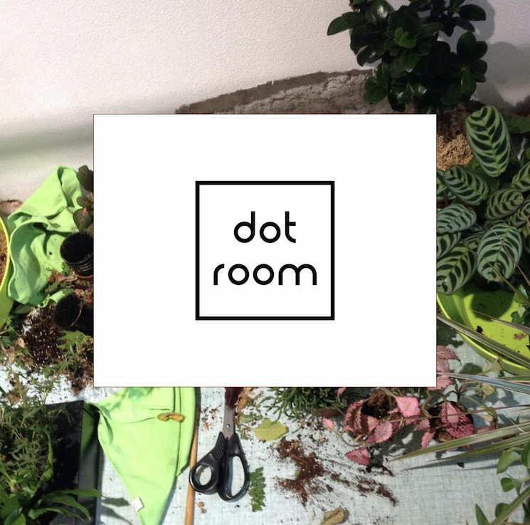 DOT ROOM | Le piante da acquistare e da coltivare